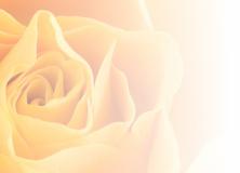 Złota Róża dla Elizy Segiet